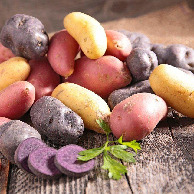 Potatoes seeds Medley Mix