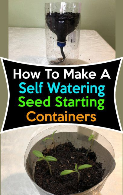 self watering seed starting container 1