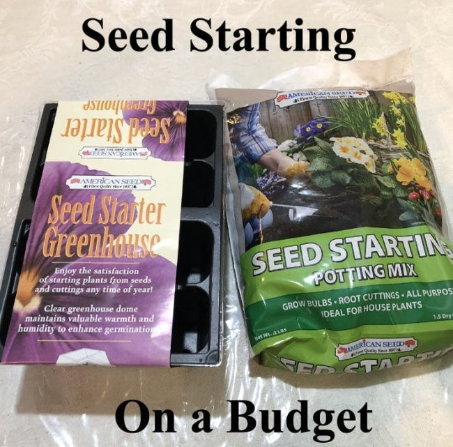 seed starting on a budget